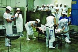 photo 1 butchering