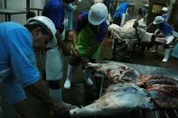 photo 2 butchering